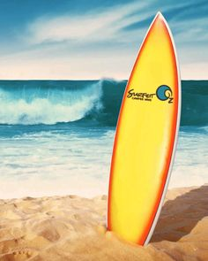 beachboard Campervan Hire Australia, Camper Van, Surfboard, Surfing, Recreational Vehicles, Travel Trailers, Surfboards, Surf, Surfs Up