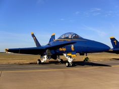 Blue Angels F-18 Hornet