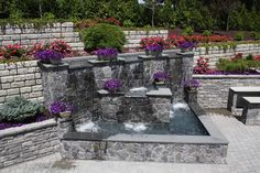 A formal water feature and landscape create the perfect environment. It consists of a matching blend of Redi-Rocks and Tehco blocs retaining wall systems, and patios and a maplebrook granite veneer water feature garden pond coped with thermal-ed blue stone. Cascading over the walls are petunias and ivy.  Flowering is Rosa x Knockout. It is completed by Hibiscus rosa-sinensis, Picea pungens Globosa, Tsuga canadensis 'Sargentii', Acer palmatum dissectum 'Viridis' and Thuja plicata Green Giant.