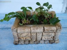 DIY garden plant container makes a great spice garden for your kitchen or used in a child's room to grow a sweet potatoe vine. The uses for this cork DIY plant container are endless. Wine Craft, Wine Cork Crafts, Wine Bottle Crafts, Wine Cork Centerpiece, Wine Cork Projects, Craft Projects, Wine Cork Art, Recycled Wine Corks, Wine Bottle Corks