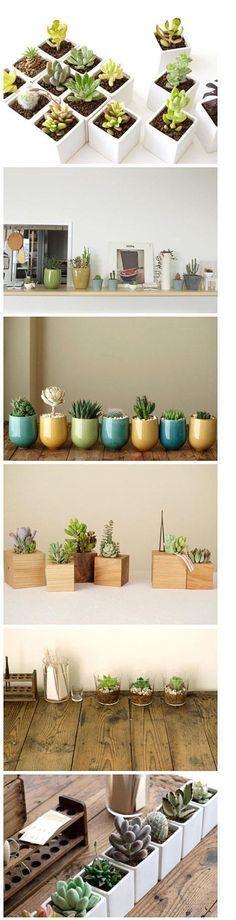 Faire un mini-jardins où les pots s'emboitent tous collés. Peut-être prendre des hauteurs différentes.