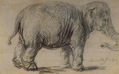 Un elefante, 1637  Este es uno de varios dibujos de Rembrandt de elefantes hembras en diferentes poses. Este elefante puede incluso ser uno llamado 'Hansken', una hembra a pesar de su nombre, se sabe que fue en Holanda en 1641. El dibujo con tiza y carbón negro, muestra un claro dominio de la forma y la técnica. La mayoría de los animales se perfila con un largo de la forma. Rembrandt utiliza lápiz negro con trazos rotos cortas para transmitir la textura de la piel del elefante áspera y…