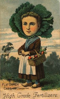 Flat Dutch Cabbage Woman, 1886 by Gatochy, via Flickr