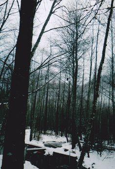 Let it snow ~ Source: mi-castillo-deactivated20130718,