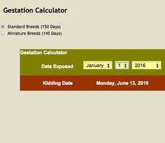 1000+ ideas about Gestation Calculator on Pinterest ... - photo#9