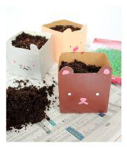 DIY Cute Milk Carton Planters