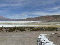 Salar de Surire Chile