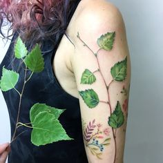 "Gefällt 13.8 Tsd. Mal, 28 Kommentare - tattoo and Illustration (@rit.kit.tattoo) auf Instagram: ""the birch branch for an amazing girl from Switzerland  #liveleaftattoo #botanical #botanicaltattoo…"""
