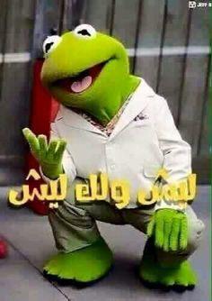 Arabic Jokes, Arabic Funny, Funny Arabic Quotes, Graphic Art Prints, Beautiful Rose Flowers, Funny Comments, Funny Jokes, Dinosaur Stuffed Animal, Christmas Ornaments