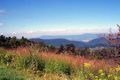 Shenandoah Valley from Skyline Drive.