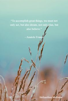 To accomplish great things, we must not only act, but also dream, not only plan, but also believe. Anatole France #positivequote #motivationalquote #inspirationalquote #quotes