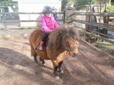 Winter Ponies and the people who ride them... http://www.facebook.com/cowboymagic