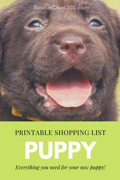The Best New Puppy Shopping Checklist - Don't get overwhelmed trying to figure out all the puppy supplies you need. Our new puppy shopping checklist will help you save money. Rescue Puppies, Best Puppies, Toy Puppies, Puppy Find, New Puppy, Bathing A Puppy, Puppy Potty Training Tips, Puppy Shampoo, Dog Body Language
