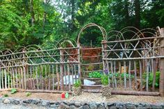 Fence idea... while I'm at it, I will make a bent willow chair to put in my garden.