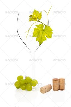 Empty goblet. ...  Green Grapes, Viniculture, alcohol, alcoholic, appetizer, background, beverage, chardonnay, close up, contemporary, cork, culinary, delicious, drink, empty, fruits, glass, goblet, gourmet, grape, isolated, italian, leaves, luxurious, minimal, modern, natural, nature, nobody, organic, sparse, still life, stopper, traditional, vertical, vine, viticulture, white, white background, white grape, wine, wine cork, wineglass, yellow