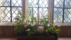 Window sill arrangements for church using potted herbs as base and then filled with flowers in test tubes of water Church Windows, Herb Pots, Unusual Flowers, Flowers Delivered, Local Florist, Window Sill, Perennials, Flower Arrangements, Potted Herbs