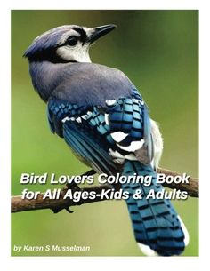 Bird Lovers Coloring Book for Adults and Kids of All Ages 40 Coloring Pages of Beautiful Birds ** Continue to the product at the image link.