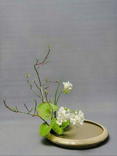 Arrangement Floral Ikebana, Arrangements Ikebana, Flower Arrangements Simple, Flowers Nature, Faux Flowers, Beautiful Flowers, Exotic Flowers, Purple Flowers, Beautiful Pictures