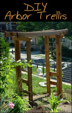 What plants do you think you could grow in your area if you had this arbor trellis? Is this going to be your next project?
