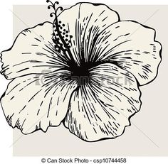 Clipart Vector of Hibiscus flower csp10744458 - Search Clip Art ...