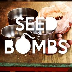 "When you make your own ""seed bombs,"" your garden will explode with color. Let Mr Brown Thumb show you how."