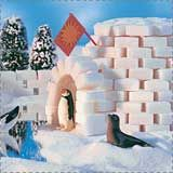 Lots of great winter craft ideas...you can do igloos out of marshmallows too @Renee Hugo