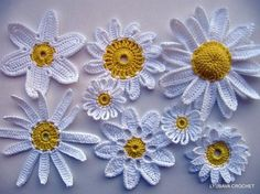 You have to see Crochet Daisy Flowers by Lyubava Crochet!