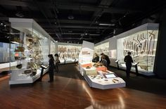 2014 First Peoples exhibition at Melbourne Museum by Peter Wilson at Coroflot.com