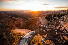 Cedar Breaks National Monument, Utah - Bing Images