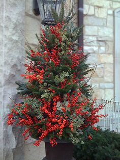 Plant Parenting – Winter outdoor planters, container gardening - Flower Garden İdeas İn Front Of House Christmas Urns, Christmas Planters, Christmas Arrangements, Outdoor Christmas Decorations, Christmas Holidays, Christmas Wreaths, Christmas Crafts, Holiday Decor, Winter Holidays