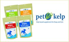 Looking for a unique, healthy, corn- and wheat-free treat for your pup? Try two bags of these soft chew Kelpies treats from Pet Kelp. They're made with real nutritious ocean kelp, omega-rich flax seed, and fish oil. They're available in four flavors: Blueberry Wave, Cranberry Cove, Apple Splash, and Pumpkin Point. Blueberries are rich in antioxidants, cranberries and apples are rich in vitamins, and pumpkins help your dog's digestion. $18