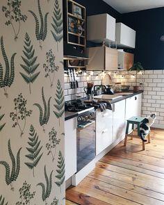 """9,228 Likes, 150 Comments - Dagmara Fajks (@roomor_) on Instagram: """"• Touch Of Green in The Kitchen • To właśnie tutaj paprotki zastąpiły naszą czarną ścianę…"""""""