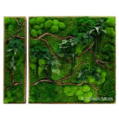 Artisan Moss panel series 2-piece green art. We can create almost any size of moss art for you!