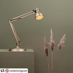 🇩🇰 ・・・ ARCHI 💡Junior in Brass with base (Optional accessory) Introductory Campaign 🍂 Interior Lighting, Lighting Design, Desk Lamp, Table Lamp, Nordic Living, Living Room Lighting, Danish Design, Lamp Design, Copenhagen