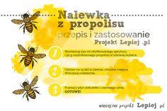 Projekt Lepiej | Nalewka z propolisu. Nalewka propolisowa. Przepis i zastosowanie nalewki propolisowej. Propolis, kit pszczeli, zdrowie. #bee #nature #health #propolis #recipe