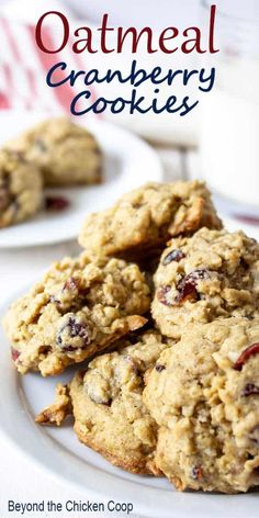 Oatmeal Cranberry Cookies are a delicious chewy oatmeal cookie with added dried sweetened cranberries. Oatmeal Cranberry Cookies are a delicious chewy oatmeal cookie with added dried sweetened cranberries. Delicious Cookie Recipes, Easy Cookie Recipes, Yummy Cookies, Baking Recipes, Dessert Recipes, Harvest Cookies Recipe, Oatmeal Cookie Recipes, Dog Recipes, Cake Cookies