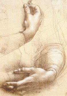"Study of Hands - Leonardo, da Vinci - Renaissance (High Italian, ""Cinquecento"") - Silver point - Body - TerminArtors"
