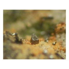 Cupromolybdite, Cu3O(MoO4)2, Yadovitaya Fumarole, Great Fissure, Tolbachik, Far Eastern Region, Russian Federation.