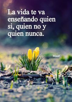 ... Spanish Inspirational Quotes, Spanish Quotes, Positive Phrases, Positive Vibes, Favorite Quotes, Best Quotes, Bien Dit, Quotes En Espanol, Life Advice