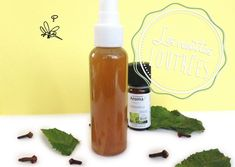 Solution naturelle faite maison contre les piqûres de moustiques : citronelle, menthe et clous de girofle.