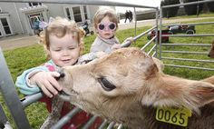 Airfield: Dublin's only working farm that is open to the public. Charitable organisation, established by the Overend family. Local History, Family History, Genealogy Search, Ireland, Irish, Dublin, Animals, Organization, Animales
