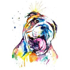 Colorful English Bulldog Art Print Print of my Original Watercolor... ❤ liked on Polyvore featuring home, home decor, wall art, water colour painting, english bulldog paintings, colorful paintings, colorful home decor and portrait painting