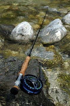 A fly rod and reel combination. *Equipment for Trout Fishing Number one on the list is, of course, a valid fishing license. Not even taking a header into the river can ruin a fisherman's day like not having a license when the game warden shows up. Gone Fishing, Best Fishing, Fishing Reels, Fishing Lures, Fishing Tackle, Fishing Knots, Crappie Fishing, Fishing 101, Fishing Stuff
