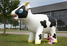 inflatable lemonade cow