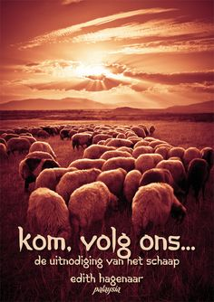 Kom, volg ons... | Sunshine for the soul