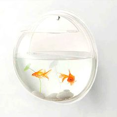 Wall-Mounted Fish Bowl | 31 Unusual Gifts To Give A Design Lover