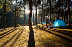 8 lugares próximos a SP perfeitos para acampar com os amigos