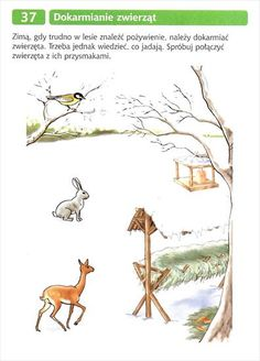 Montessori, Kangaroo, Winter, Activities, Drill Bit, Animales, Baby Bjorn, Winter Time, Winter Fashion