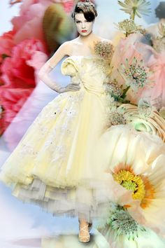 the rainbow bride