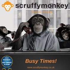 Seriously hectic times @ScruffymonkeyDM HQ at the moment #cantcomplain #web #website #webdesign #bolton #lancashire #uk #monkeymadness